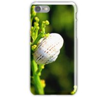 Lonely snail iPhone Case/Skin