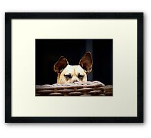 """I'm Watching You!"" Framed Print"
