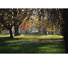 London park Photographic Print