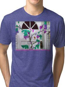 Doorway Of Life Tri-blend T-Shirt