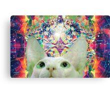 Tripping Sphynx Cat Canvas Print