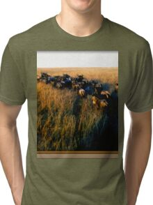 Out Of Africa #7 Tri-blend T-Shirt