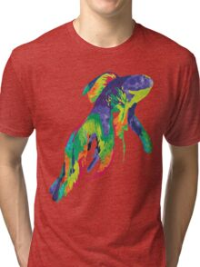 Rainbow Fish Tri-blend T-Shirt