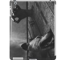 Bleak Falls Barrow  iPad Case/Skin