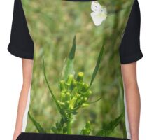 Cabbage White Butterfly Chiffon Top