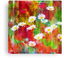 Daisies in an Abstract Red Field Canvas Print