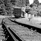 End of the Line by LadyEloise