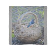 Blue Jay in Flower Pot Basket Scarf