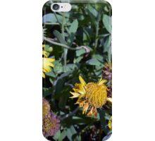 Yellow flowers in the garden. iPhone Case/Skin
