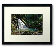 Waterfall in a jungle Framed Print