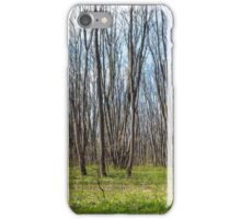 Hornbeam forest iPhone Case/Skin