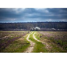 Dirt road to the forest Photographic Print
