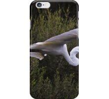 Flying Ibis iPhone Case/Skin