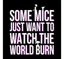 some mice just want to watch the wold burn Photographic Print