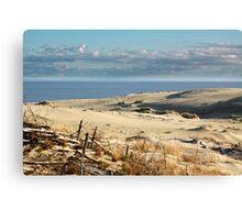 sand dune at the beach Canvas Print
