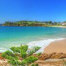 Beach at Bermagui by Michael Matthews