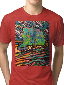 The Wind and The Willow Tri-blend T-Shirt