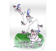 England Cricket teamwork - tony fernandes Poster