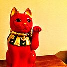 Lucky Cat by OneDayOneImage Photography