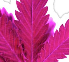 Pink Leaf ;) Sticker