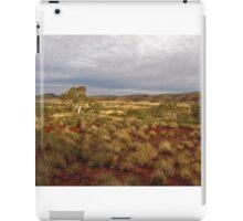 Outback Pilbara iPad Case/Skin