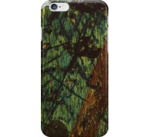 Pyroxene and Feldspar  iPhone Case/Skin