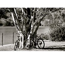 Anyone for a bike ride?  Photographic Print