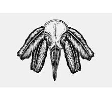 Aves (Black) Photographic Print