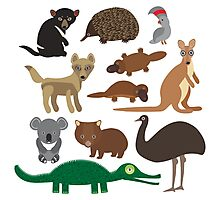 Australian animals on green background Photographic Print