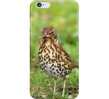 Song Thrush with earthworm II iPhone Case/Skin