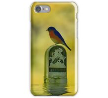 Blue Bird Thinking iPhone Case/Skin