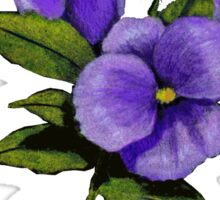 Purple Pansies: Original Colour Pencil Drawing, Flowers Sticker