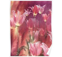 Tall Tulips Poster