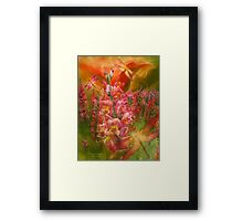 Summer Dragons Framed Print