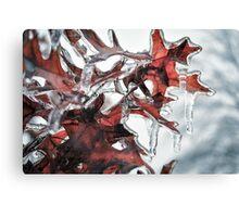Ice on Tree Leaves Canvas Print