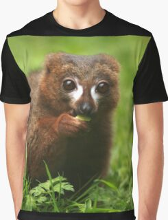 Red Bellied Lemur Graphic T-Shirt