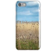 Field of reed iPhone Case/Skin