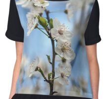 Cherry flowers Chiffon Top