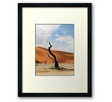 African desert Framed Print