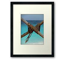 Sea Knot Framed Print