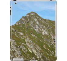 Mountain peak iPad Case/Skin
