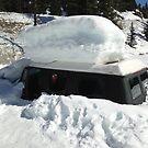 Snowed in by Derek Lowe
