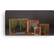 Willow Tree 4 Seasons Collection Canvas Print