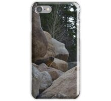 Marmot face iPhone Case/Skin