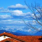 Snow on the San Gabriel Mountains by Laurie Allee