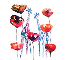 Giraffes in the Poppies Photographic Print
