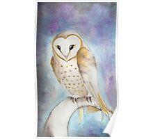 Momma Owl Poster