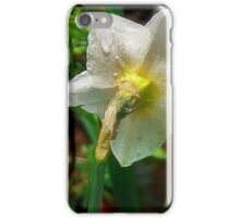 Shy Narcissus iPhone Case/Skin