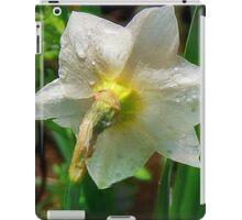 Shy Narcissus iPad Case/Skin