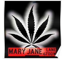 Mary Jane Lane - Black Leaf Poster